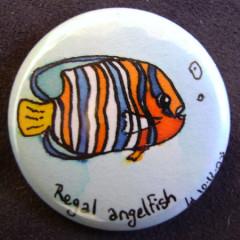 Badge Regal Angelfish